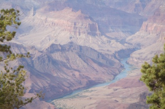 My view of the Grand Canyon