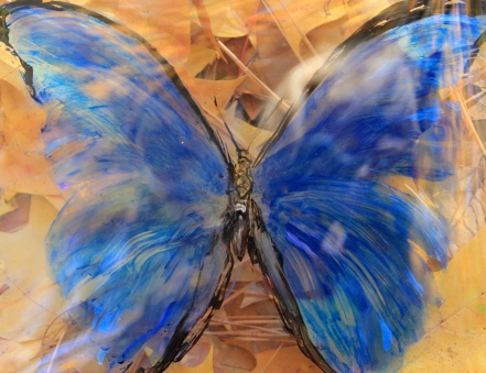 Tattered Butterfly 2